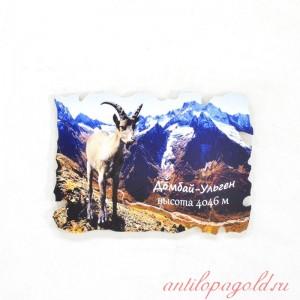 Пластиковый магнит Домбай-Ульген осенью с горным козлом
